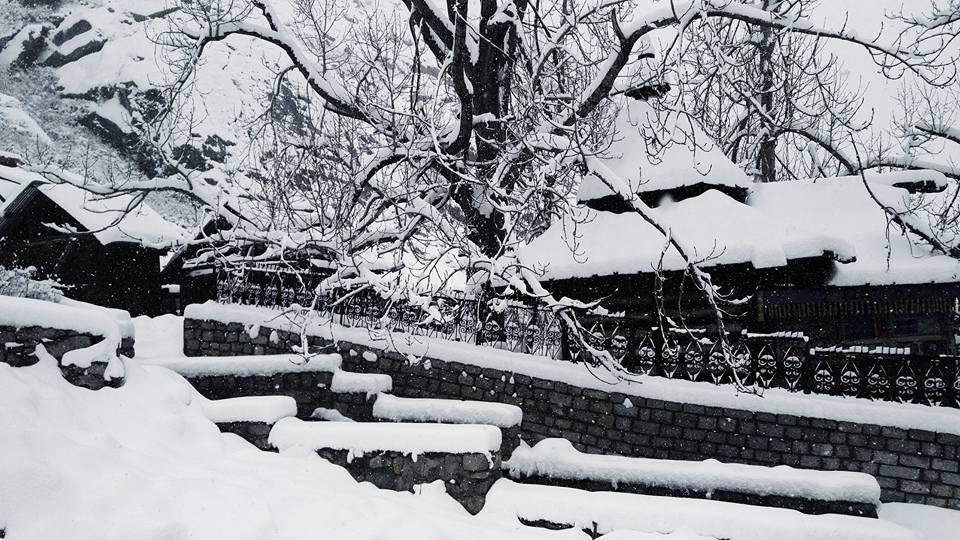 Himachal - Chitkul-Kalpa